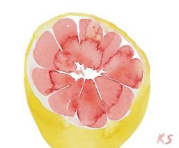 grapefruit-half-large